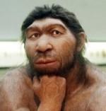 neanderthallarge-150x157