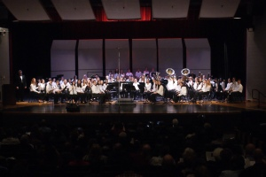 Bay Youth Orchestra of Virginia, Wind Ensemble